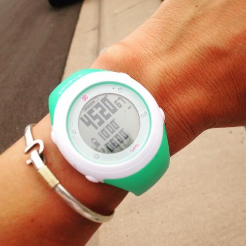 GPS-Fly-e1437509842602