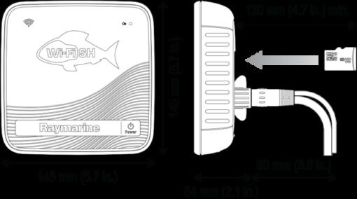 wi-fish-dimensions